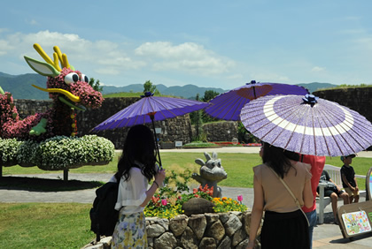 Japanese umbrella rental (mid-June – early July)