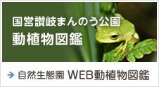 国営讃岐まんのう公園動植物図鑑/自然生態園 WEB動植物図鑑