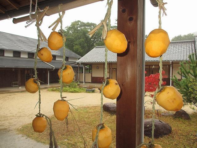 里山生活体験「ほし柿をつくろう」