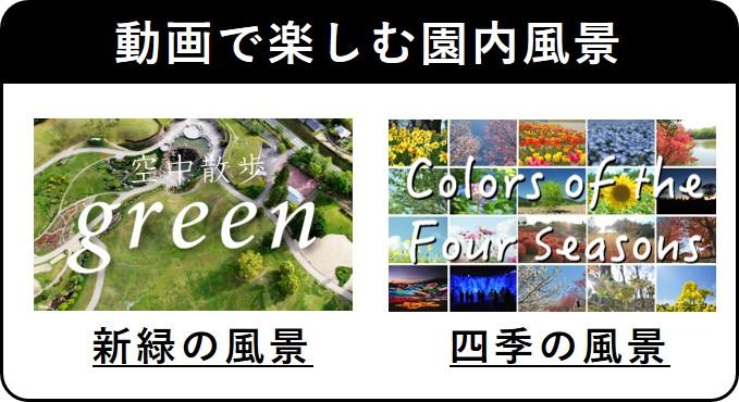 動画で楽しむ園内風景
