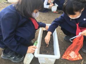 香川大学教育学部附属高松小学校