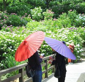 傘れんたる