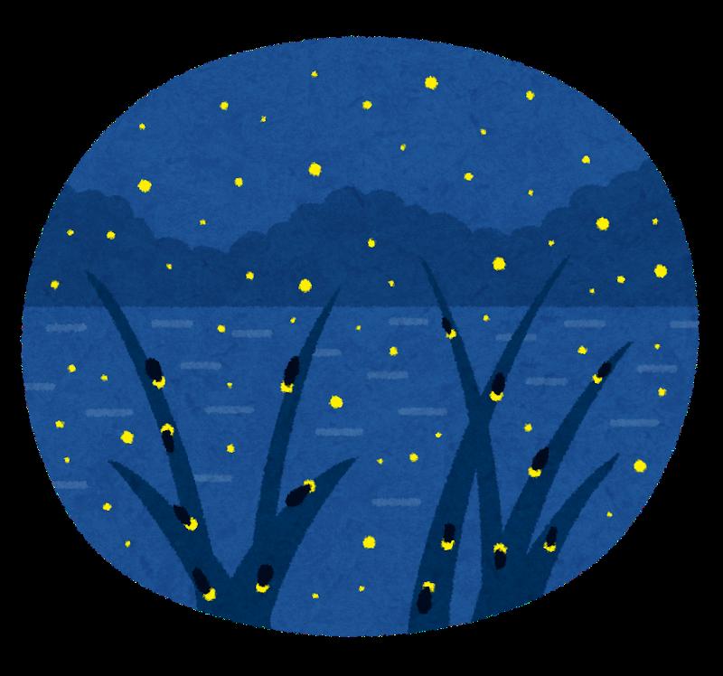 自然生態園ナイトガイドウォーク