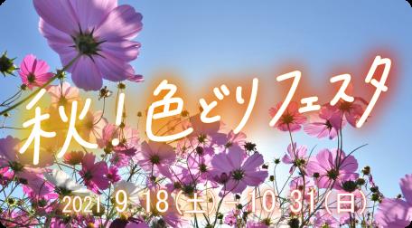 秋!色どりフェスタ 開催中!